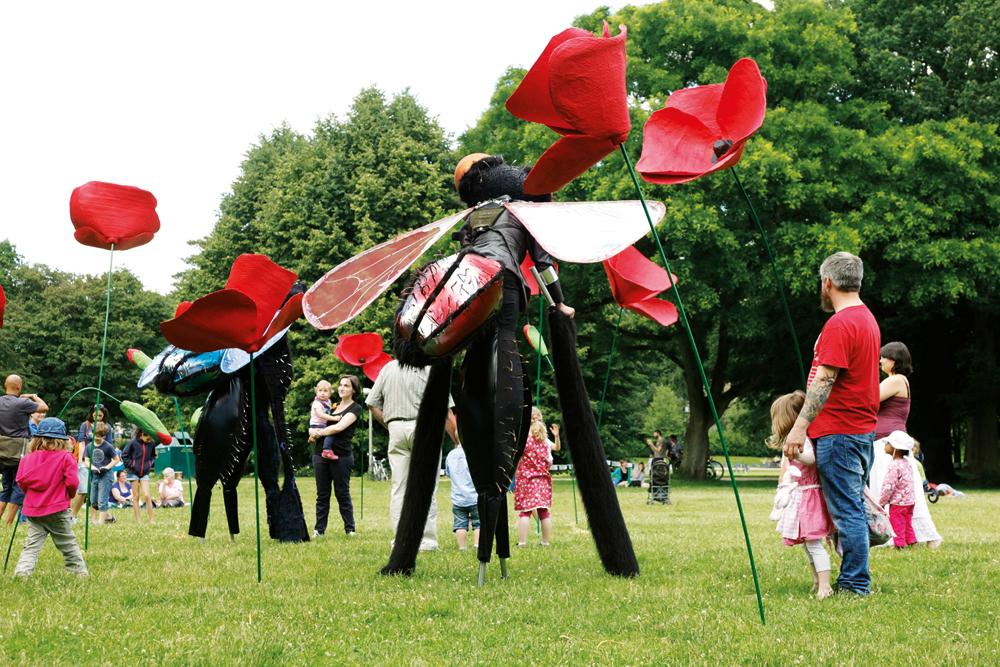 Insekten und Blumen im verwunschenen Park, Foto: Daniel Wolcke